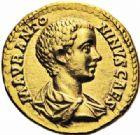 Photo numismatique  ARCHIVES VENTE 2016-19 oct EMPIRE ROMAIN CARACALLA (César 196-198 - Auguste 198-217)  262- Aureus, Rome, (196).