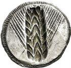 Photo numismatique  VENTE 6 oct 2017 - Coll Dr Y. Goalard et divers GRECE ANTIQUE Italie - Lucanie Métaponte (550-450) 42- Statère incus, (550-450).
