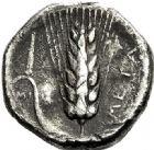 Photo numismatique  VENTE 6 oct 2017 - Coll Dr Y. Goalard et divers GRECE ANTIQUE Italie - Lucanie Métaponte (350-330) 47- Statère, (350-330).
