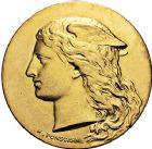 Photo numismatique  ARCHIVES VENTE 9 mars 2018 - Coll. Dr P. Corre JETONS et MÉDAILLES RARES 3ème RÉPUBLIQUE (1871-1940)  344- Médaille en or du concours hippique de Vervins (Aisne), 1893.