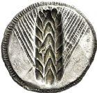 Photo numismatique  ARCHIVES VENTE 12 juin 2018 GRÈCE ANTIQUE Italie - Lucanie Métaponte (550-450) 6- Statère incus, (550-450) et Obole, (272-235).