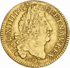 Photo numismatique  ARCHIVES VENTE 2010 -Amateur B 1 et B CHWARTZ 2 ROYALES FRANCAISES LOUIS XIV (14 mai 1643-1er septembre 1715)  304- Louis d'or aux quatre L, 1693 Toulouse.