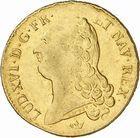 Photo numismatique  ARCHIVES VENTE 2010 -Amateur B 1 et B Chawartz 2 ROYALES FRANCAISES LOUIS XVI (10 mai 1774–21 janvier 1793)  317- Double louis d'or à la tête nue, 1790 Toulouse.
