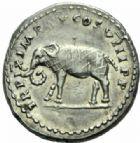 Photo numismatique  MONNAIES EMPIRE ROMAIN TITUS  César (69-79 Auguste (79-81)  Denier, Rome 80.